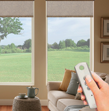 window roller shades by somfy bali