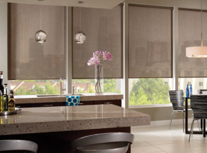 motorized window roller shades los angeles - Motorized Roller Shades